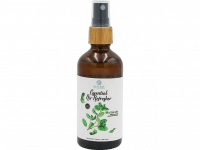 Essential Air Refresher - Mint Garden - 100ML