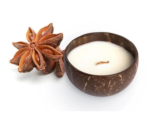 natural coconut shell candle star anise